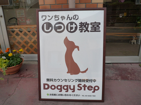 doggystep789.jpg
